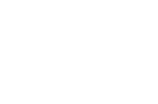 Willis & Geiger Logo Eagle