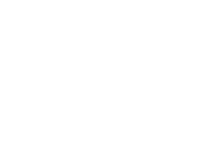 Willis & Geiger Logo Lion